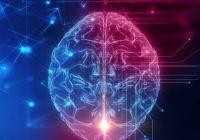 Valores y neuromarketing
